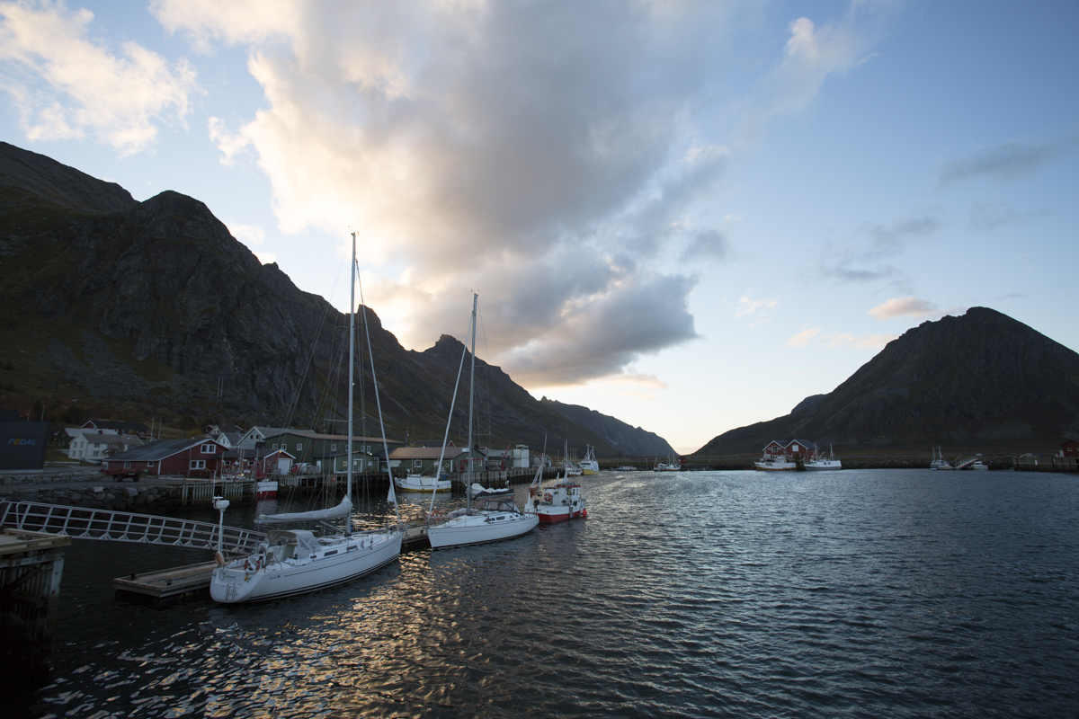 Barba at Flakstad in Lofoten.